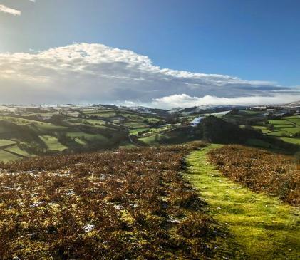 Walking on Hergest Ridge, Kington