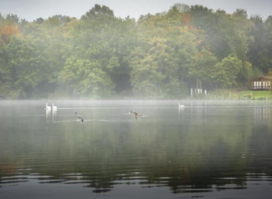 Mist on the lake - October morning at Pearl Lake photo