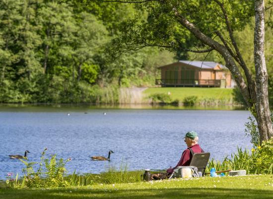 Caravan park with fishing lake at Pearl Lake Herefordshire photo