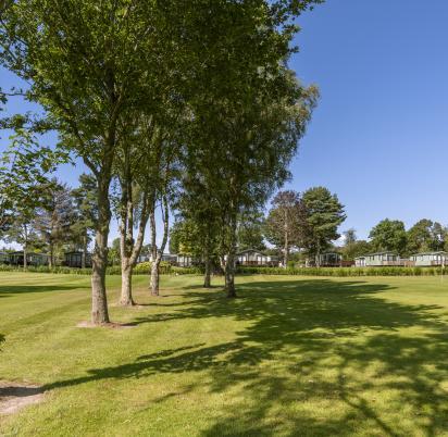 5 star caravan park with golf course photo