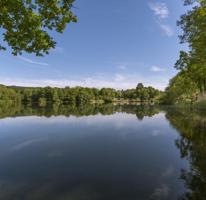 5 star holiday park with fishing lake photo