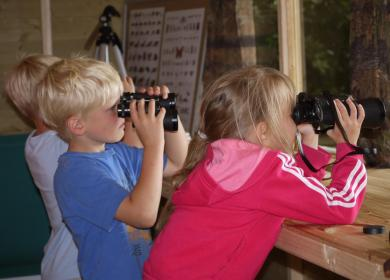 Nature hide bird watch 5 star caravan holiday park